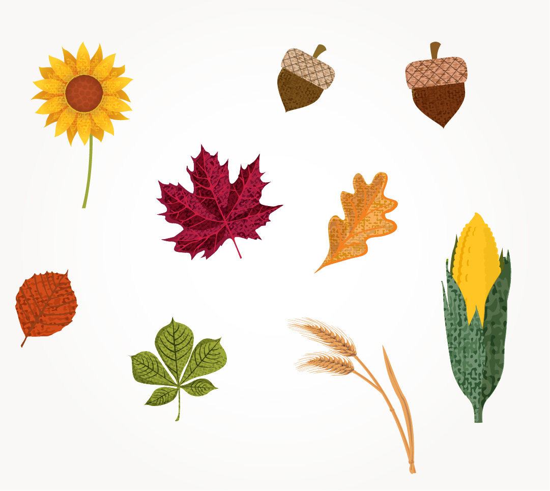 HarvestIllustrations_2